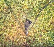 Lawnsprinkler som bevattnar grön lawn arkivfoton