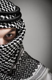 Lawrence of Arabia Stock Photography