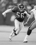 Lawrence Taylor. New York Giant LB Lawrence Taylor, #56.  (Image taken from the B&W negative Royalty Free Stock Images