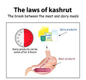 The laws of kosher. The break between the meat and dairy meals.  Stock Images