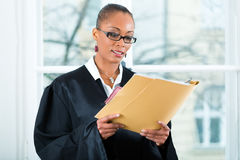 Lawyer in office with dossier standing an window. Young female lawyer working in her office with a file or dossier royalty free stock photos