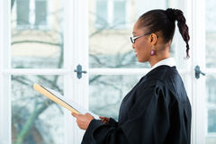 Lawyer in office with dossier standing an window. Young female lawyer working in her office with a file or dossier stock images