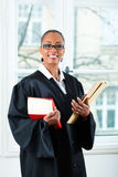 Lawyer in office with law book and Dossier. Young female lawyer working in her office with a typical law book and a file or dossier stock image