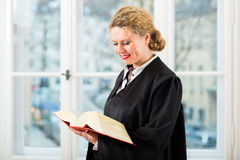 Lawyer in office with law book reading by window Stock Images