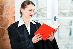 Lawyer in office reading law book Royalty Free Stock Photo