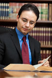 Lawyer portrait Royalty Free Stock Photos
