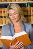 Lawyer reading book in the law library Royalty Free Stock Images