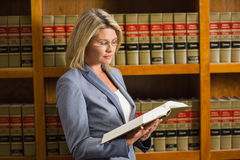 Lawyer reading book in the law library Stock Image