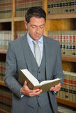 Lawyer reading book in the law library Royalty Free Stock Photos