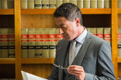 Lawyer reading book in the law library Stock Images