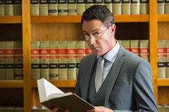 Lawyer reading book in the law library. At the university Stock Photography