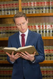 Lawyer reading in the law library Royalty Free Stock Image