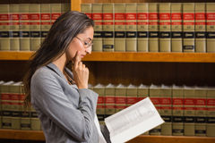 Lawyer reading in the law library Stock Photos