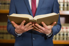 Lawyer standing in the law library Royalty Free Stock Photos