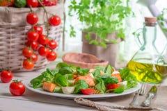 Lax med grönsaker och grönsallat Arkivbild