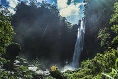 Laxapana-Wasserfall Sri Lanka Stockbilder