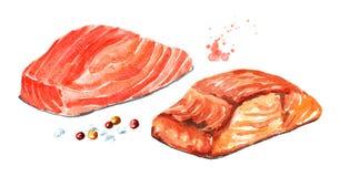 Laxfisken filea, rått och grillat Dragen illustration för vattenfärg som hand isoleras på vit bakgrund stock illustrationer