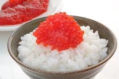 Laxfiskrom med ris, japansk mat fotografering för bildbyråer
