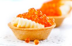 Laxkaviar Tartlets med den röda kaviaren näringsrikt begreppsmatgourmet Skaldjur laken för handen för kaviarfärg gjorde den nya l royaltyfria foton