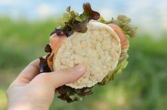 Laxsmörgås i handen på gräsbakgrund Royaltyfria Bilder