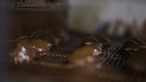 Lay-out en het behandelen van gedroogd fruit met chocolade, banketbakkerij productie stock videobeelden