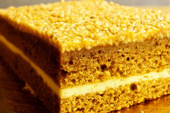 Layer cake. With nuts and cheese Royalty Free Stock Photo