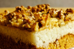 Layer cake. With walnuts and chocked coconut Royalty Free Stock Images