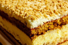 Layer cake. With nuts and cream Stock Photos