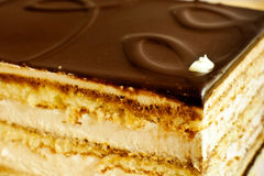Layer cake. With cocoa and cream Royalty Free Stock Image