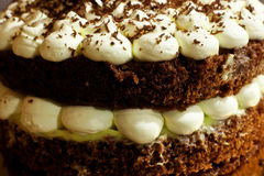 Layer cake. 2 layers cake with chocolate and meringue Royalty Free Stock Photos