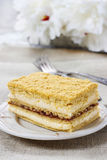 Layer honey cake Stock Photos