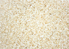 A layer of rice crop as a background or texture Stock Photography