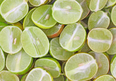 Layer of sliced key limes Royalty Free Stock Photo