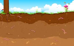 Layer of Soil. Illustration of inner layer of soli with earthworm Royalty Free Stock Images