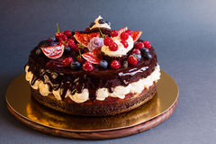 Layered chocolate cake with fruit Stock Image