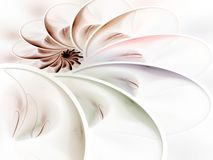 Layered Curves Spiral Abstract Stock Images
