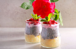 Layered fruit, berry and chia seed and yogurt snack. In jars Stock Photography