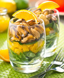Layered Mussel Salad with Citrus Vinaigrette. A delicious layered mussel salad with citrus vinaigrette Royalty Free Stock Photography