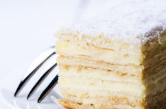 Layered piece of cake. Close up Royalty Free Stock Images