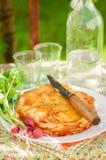 Layered Potato Bake Royalty Free Stock Images