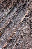 The layered rocks Stock Photo