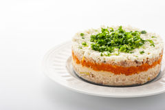 Layered salad with eggs and fish on the white ceramic plate horizontal. Layered salad with eggs and fish on the white ceramic plate on the white background Stock Image