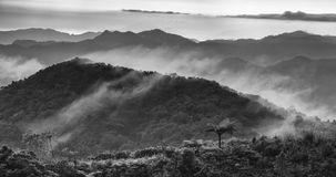 Layers in Black & White. Beautiful Misty Sunrise in Black Stock Images