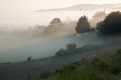 Layers of fog over Autumn agricultural landscape Royalty Free Stock Photos