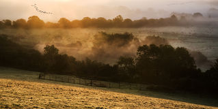 Layers of fog over Autumn agricultural landscape Royalty Free Stock Images