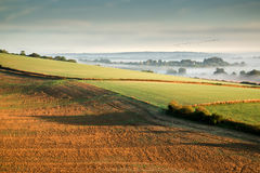 Layers of fog over Autumn agricultural landscape Stock Photography