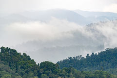 Layers of high mountain, foggy on rain forest. Stock Photography