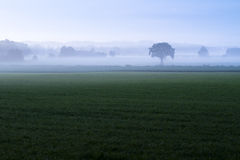 Layers of mist and fog in the early morning Stock Photo