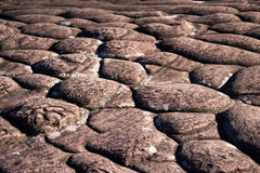 Layers of sedimentary sandstone Stock Photography