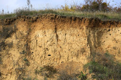 LAyers of soil Royalty Free Stock Photo